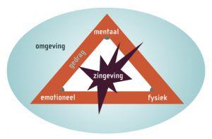 Stermodel van de zes ontwikkelingsniveaus