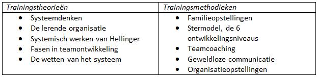 Opleiding Systemisch teamcoach
