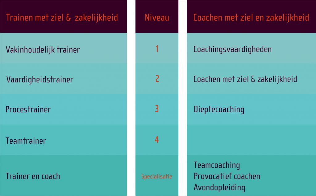 opleidingsschema