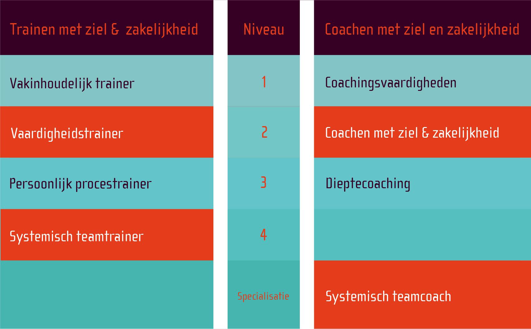 nieuw-opleidingsschema_-lichten-02