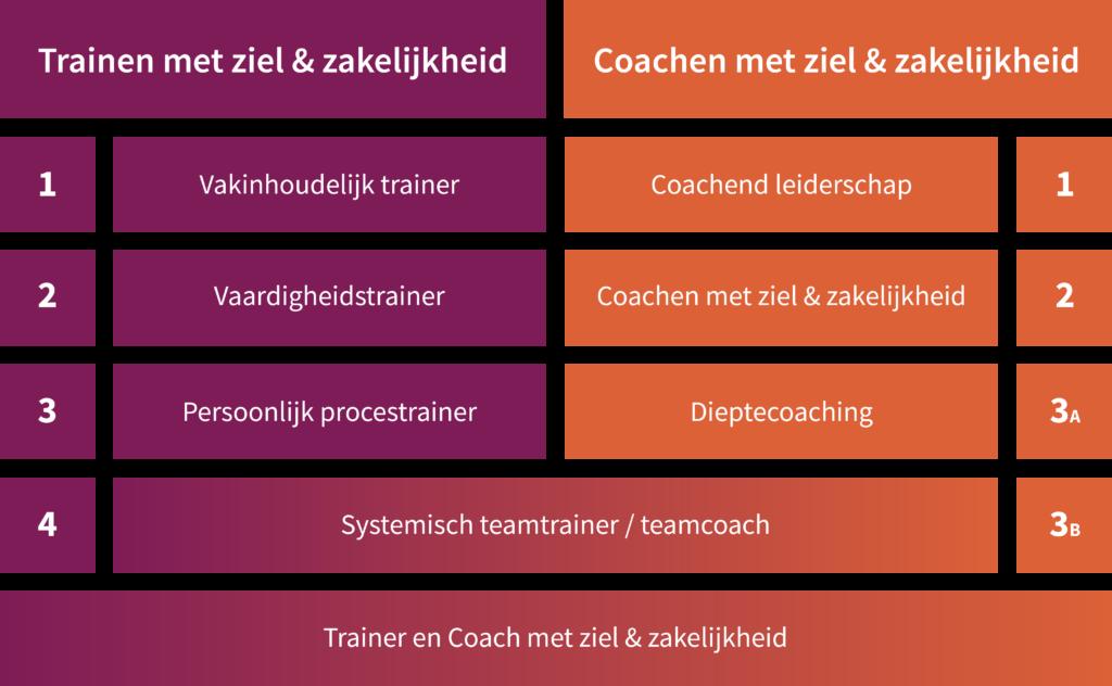 Opleiding Trainen met ziel en zakelijkheid 2: Vaardigheidstrainer