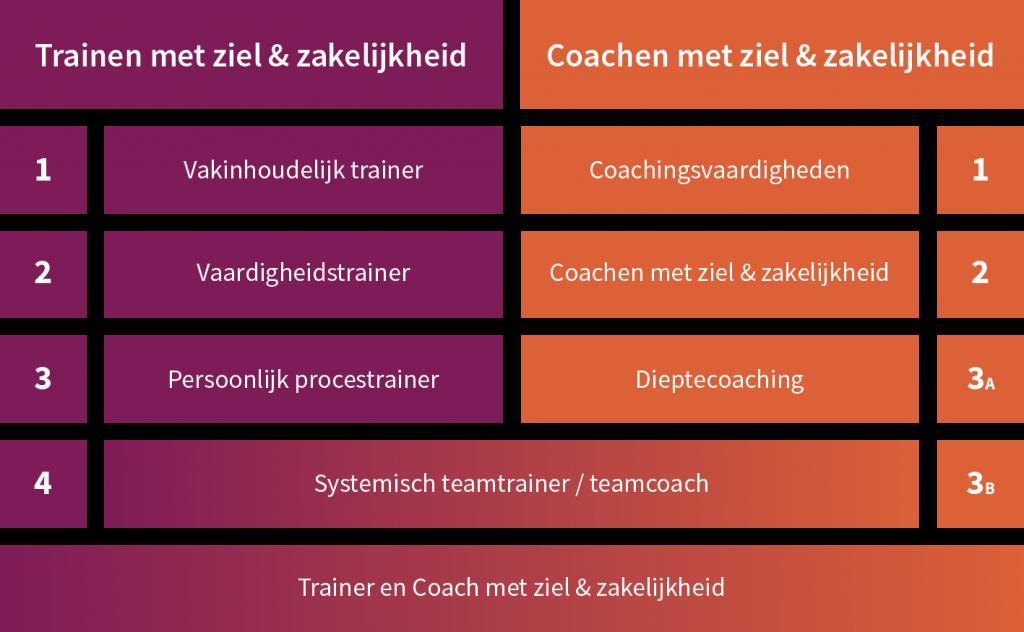 Welke coachingsopleiding of trainersopleiding past bij jou ambitie en ervaring?