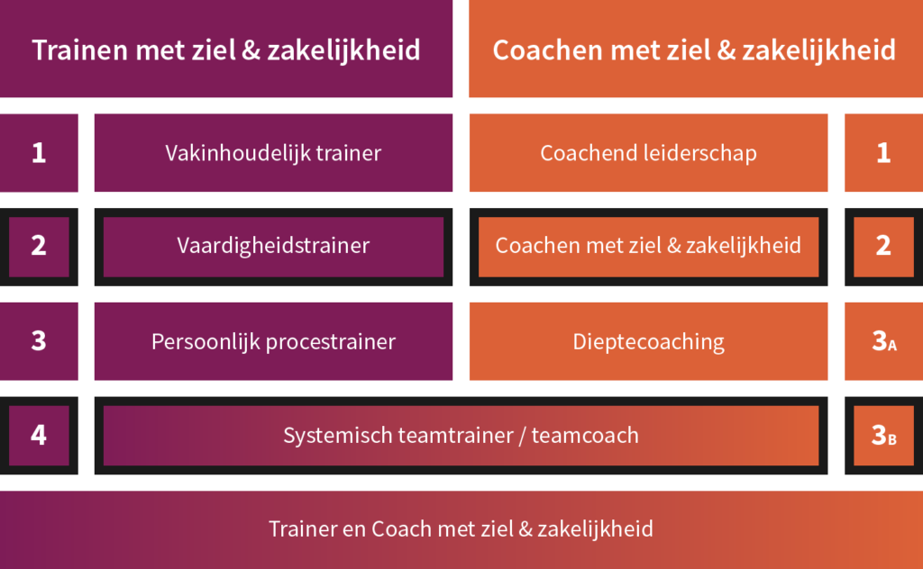 Post HBO opleiding systemisch teamcoach