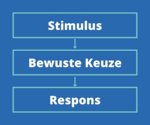 Werkvorm Kernwaarden en Proactief Handelen